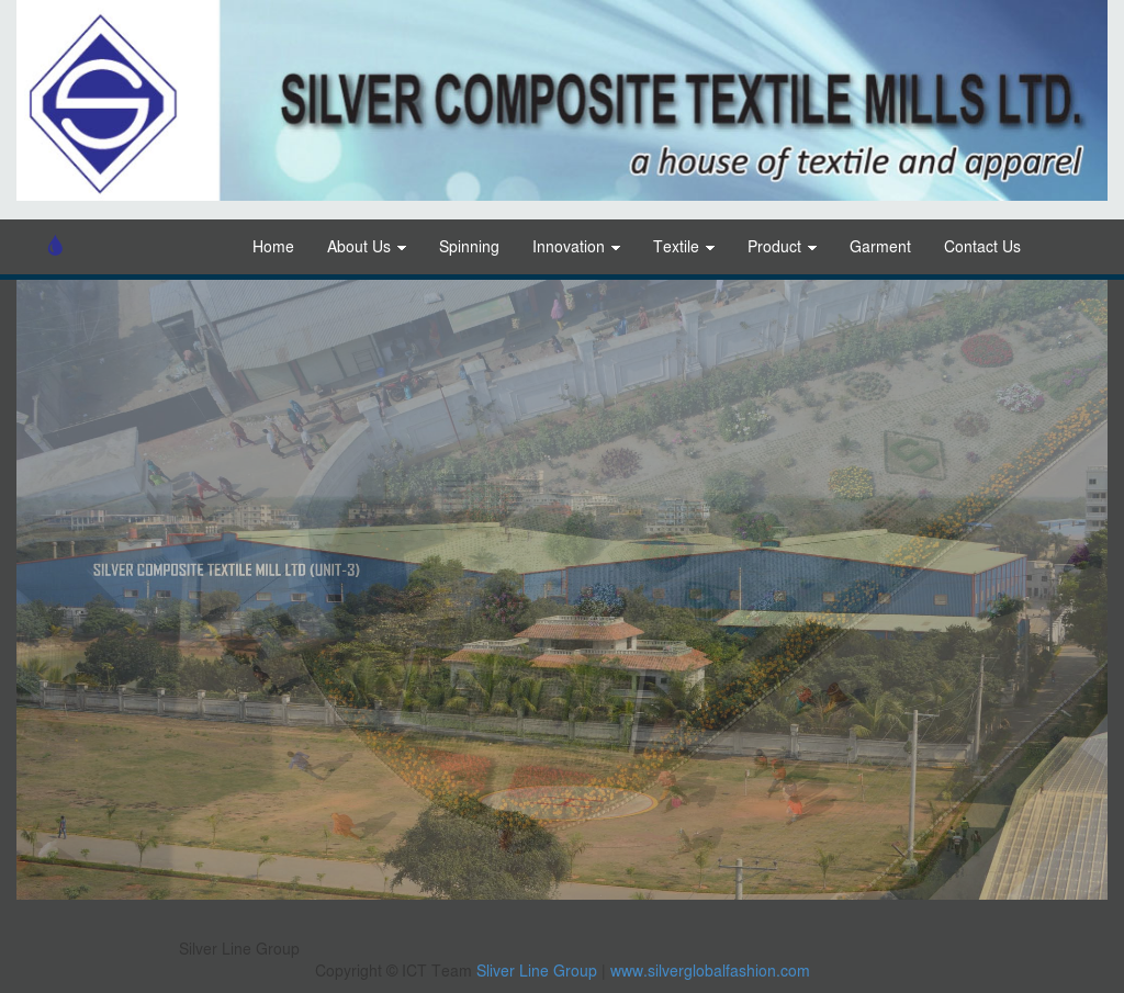 Silver Line Group Competitors, Revenue and Employees - Owler