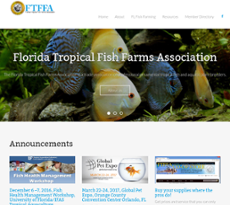 Florida Tropical Fish Farms Competitors, Revenue and