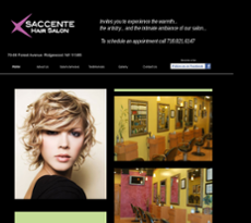 Saccente Hair Salon Competitors Revenue And Employees Owler