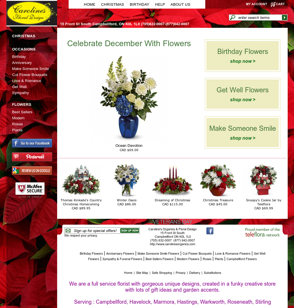 Carolines organics floral design competitors revenue and carolines organics floral design competitors revenue and employees owler company profile izmirmasajfo