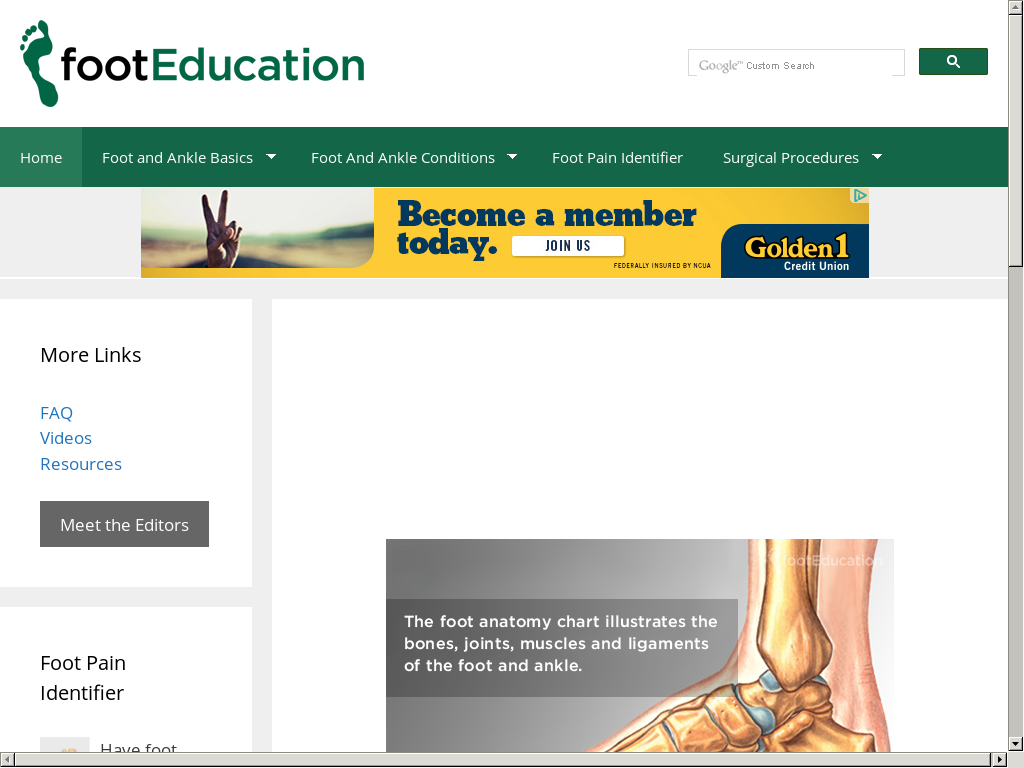 Footeducation Competitors, Revenue and Employees - Owler