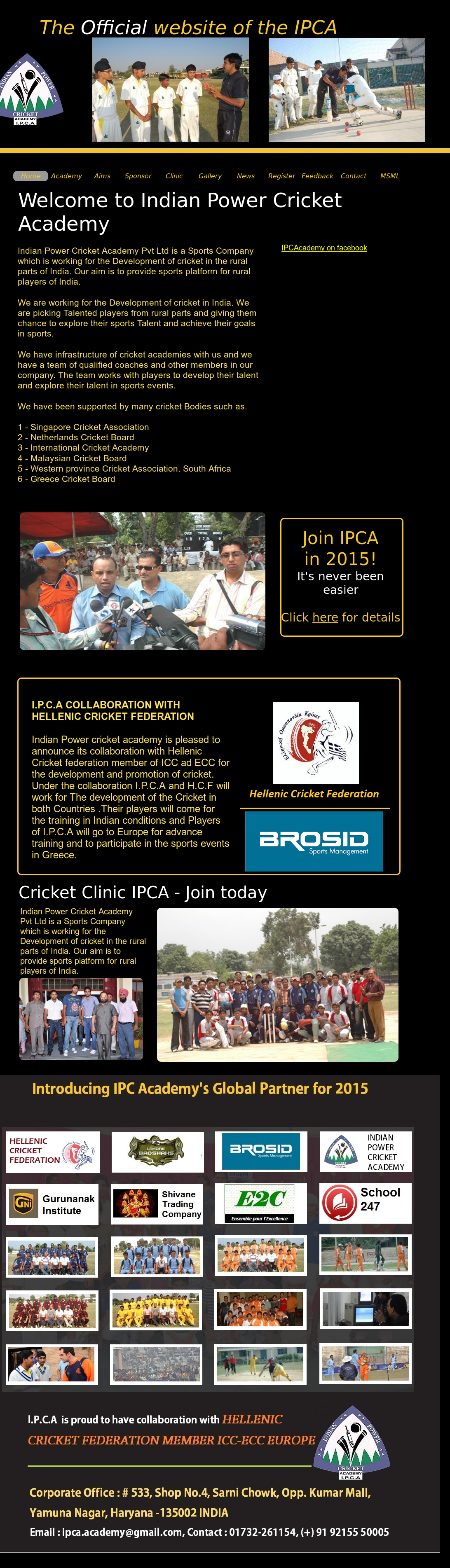 Indian Power Cricket Academy Ipca Competitors Revenue And