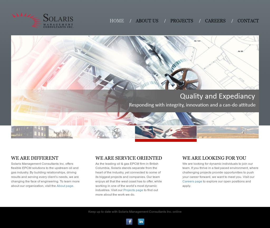 Solaris Management Consultants Competitors, Revenue and Employees