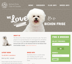 Bichon Frise Club Of Canada Competitors, Revenue and